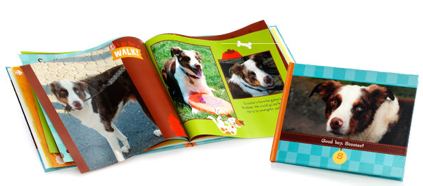 CELEBRATE YOUR PET WITH SHUTTERFLY
